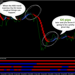 HAS Forex Robot screenshot #4