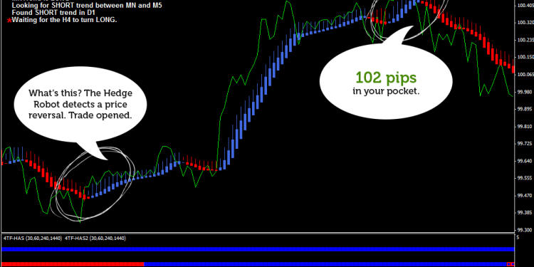 Hedge Forex Robot screenshot #1